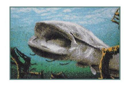 Delphin Rohožka 3D Sumec pod hladinou