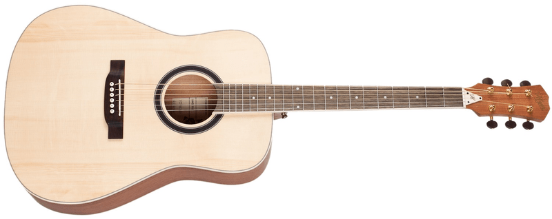 Hoyer HAG110 Akustická kytara