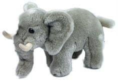 Rappa Pluszowy słoń, 22 cm