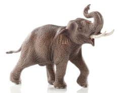 Schleich wild life azijski slon, samec