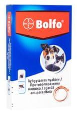 Bayer Bolfo bolhanyakörv, kicsi, 38 cm