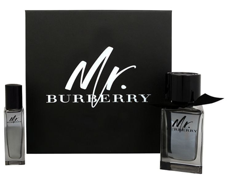 Burberry Mr. Burberry EDT 100 ml + EDT 30 ml