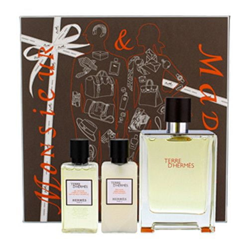 Hermès Terre D´ Hermes - EDT 100 ml + balzám po holení 40 ml + sprchový gel 40 ml