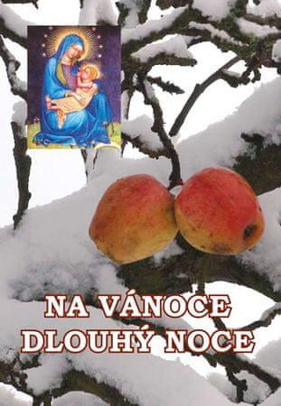 kolektiv autorů: Na Vánoce dlouhý noce