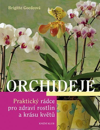 Goedeová Brigitte: Orchideje - Praktický rádce pro zdraví rostlin a krásu květů
