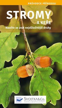 Stromy a keře - Naučte se znát nejdůležitější druhy