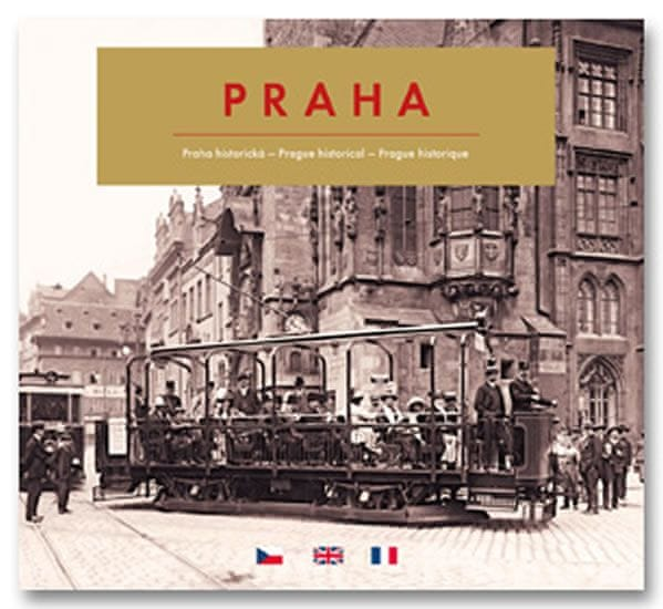 Stiburek Luboš: Praha historická