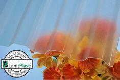LanitPlast Trapézový polykarbonát Marlon CSE FR síla 0,8 mm čirý