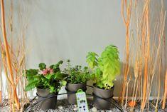 Previosa Květináče GEO talpa 3 ks + kovový stojan