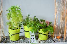 Previosa 3 doniczki GEO zielone + stojak