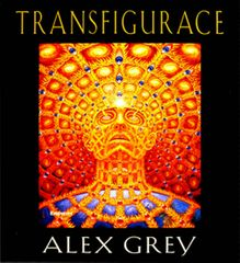 Grey Alex: Transfigurace