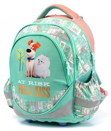 Karton P+P Anatomiczny plecak ERGO Junior Pets