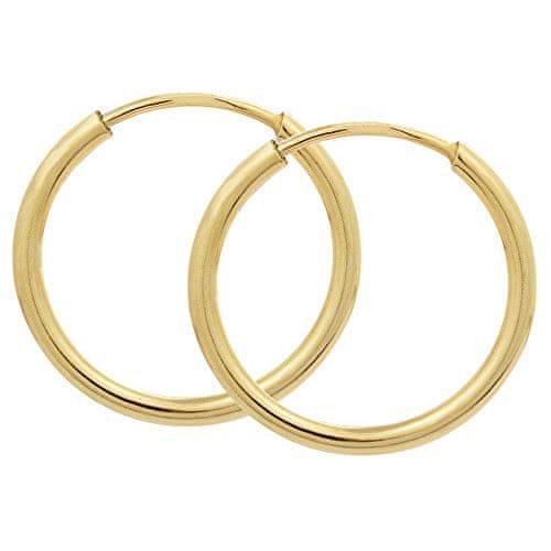 Brilio Zlaté náušnice kruhy 231 001 00333