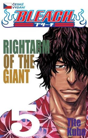 Kubo Tite: Bleach 5: Right Arm of the Giant