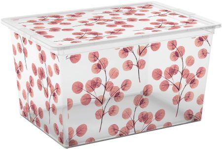 Kis škatla za shranjevanje C-Box Nature, XL, 50 l
