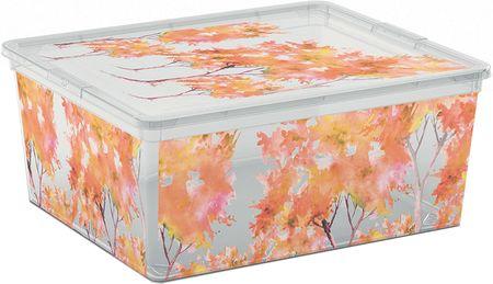 Kis škatla za shranjevanje C-Box Nature, M, 18 l