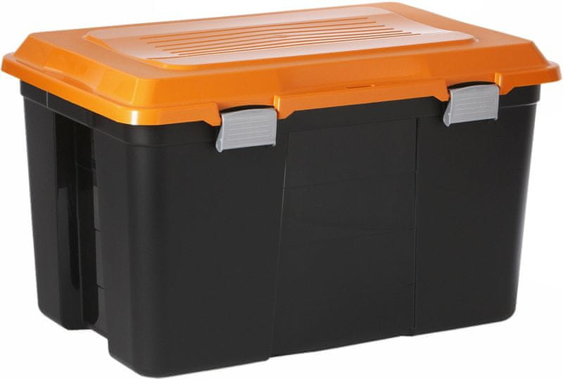 Rotho Úložný box Packer 60 l
