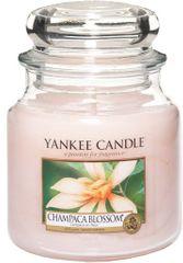 Yankee Candle Vonná svíčka Classic střední 411 g, Champaca Blossom