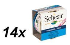 Schesir Kitten konzerv - tonhal + aloe 14 x 85g