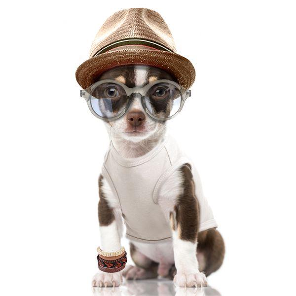 Milk&Pepper Tričko pro psa - vzor lev 23 cm