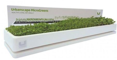 Urbanscape dekorativni komplet za vzgojo mikro zelenjave, veliki