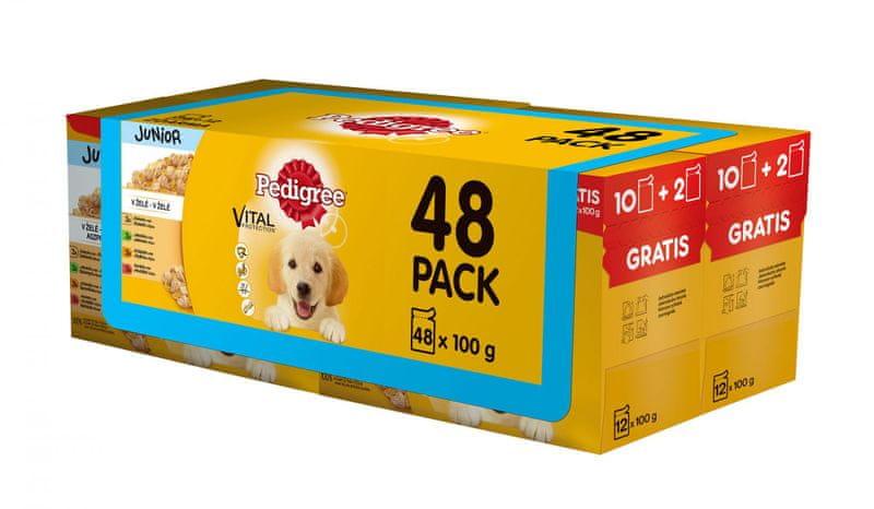 Pedigree kapsičky Junior multipack 4 x (12 x 100g)