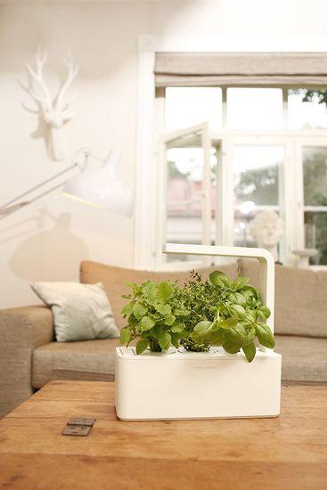 Click and Grow chytrý květináč pro pěstování bylinek, zeleniny, květin a stromů - Smart Garden 3, šedá