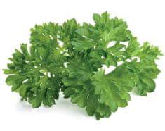Click and Grow náplň pre smart kvetináče a farmy - Petržlen, 3ks v balení
