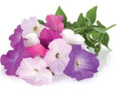 Click and Grow náplň pro smart květináče a farmy - Petunie, 3ks v balení