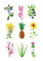 Click and Grow kazety so substrátom bez semienok, 3ks v balení