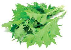 Click and Grow náplň pre smart kvetináče a farmy - Listová horčica, 3ks v balení