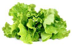 Click and Grow náplň pro smart květináče a farmy - Zelený salát, 3ks v balení