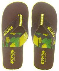 Cool Shoe moške japonke Original Slight Tropical LTD, rjave