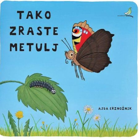 Ajda Erznožnik: Tako zraste metulj