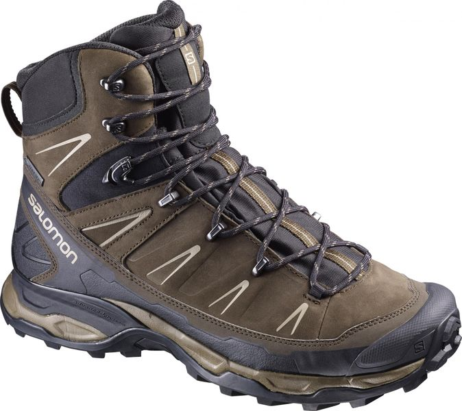 Salomon X Ultra Trek Gtx Brown/Black/Navajo 42.0