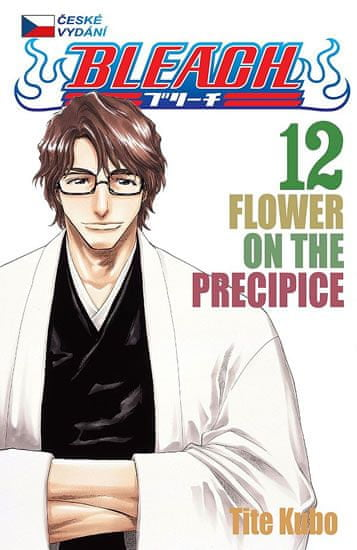 Kubo Tite: Bleach 12: Flower on the Precipice