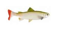 Unicat Gumová Nástraha Trout GT 20 cm 105 g