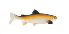 Unicat Gumová Nástraha Trout BT 15 cm 50 g 2 ks