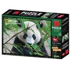 National Geographic sestavljanka 3D - Panda, 500 kosov, 61 x 46cm