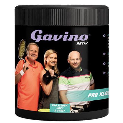 Gavino AKTIV PRO KLOUBY PLUS 700 g