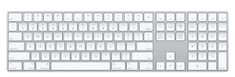 Apple brezžična tipkovnica Magic Keyboard - SLO