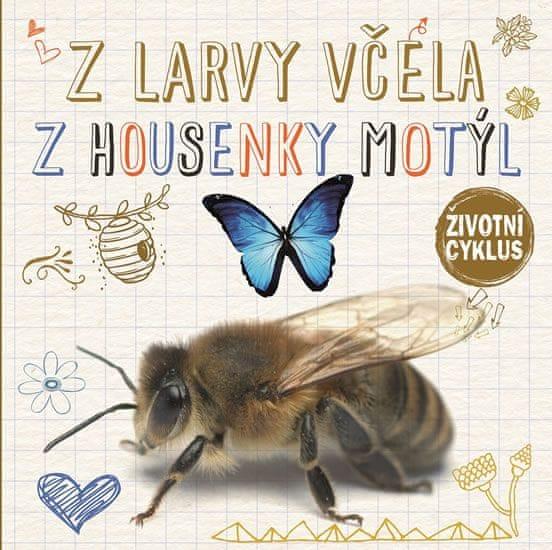 Jones Grace: Z larvy včela, z housenky motýl - Životní cyklus