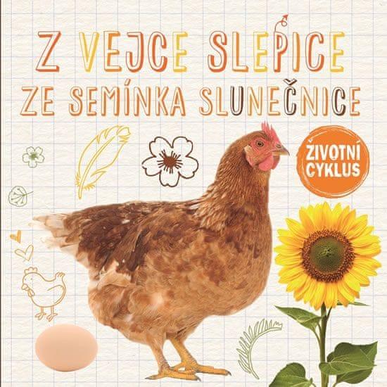 Jones Grace: Z vejce slepice, ze semínka slunečnice - Životní cyklus