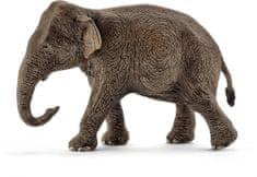 Schleich Állatka - ázsiai elefánttehén