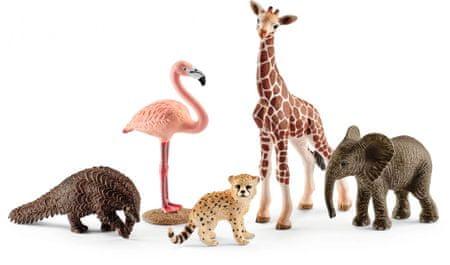 Schleich zestaw dzikie zwierzęta