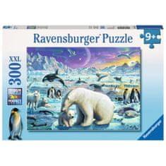 Ravensburger sestavljanka polarni svet