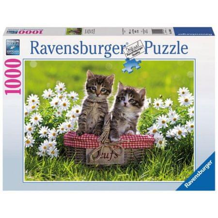Ravensburger sestavljanka mačka v košari
