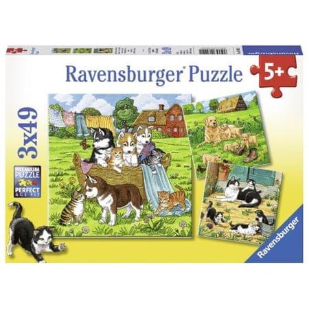 Ravensburger sestavljanka Mački, psi in družina, 3x49d