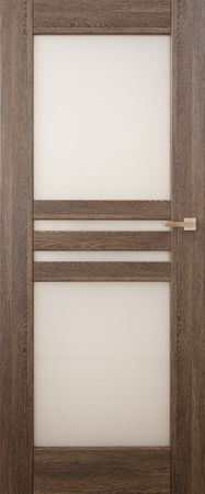 VASCO DOORS Interiérové dveře MADERA kombinované, model 6, Dub rustikál, B