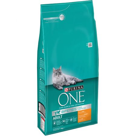 Purina karma One Adult, 6kg